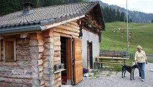 [瑞奧行] Day 9 小天使故鄉海蒂村,高山上的小木屋/山坡上是牛不是羊