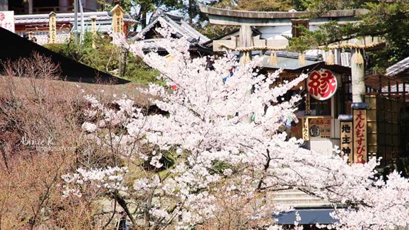 [櫻京阪 Day4-1] 前往清水寺